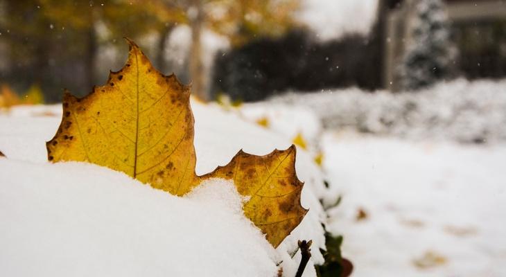 Погода в Сыктывкаре 4 октября: снегопады и холода