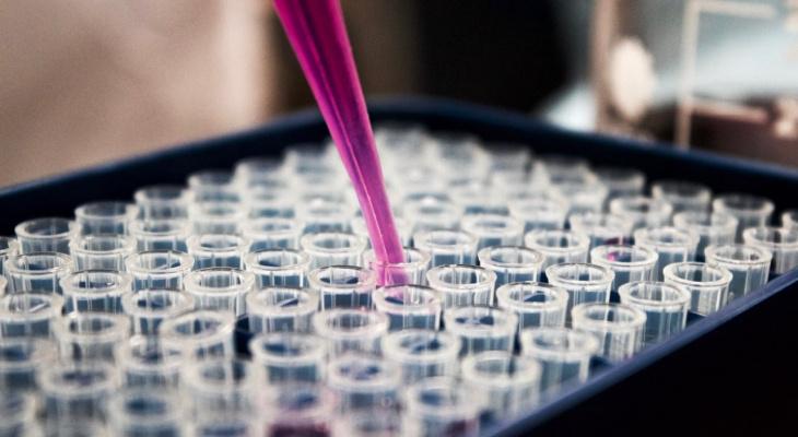 Ученые нашли вещество, которое предотвращает рак и старение