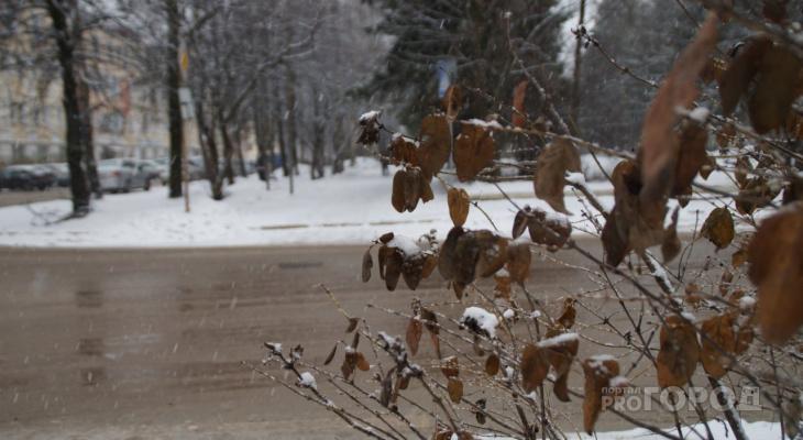 Погода в Сыктывкаре на 27 октября: к вечеру сильно похолодает