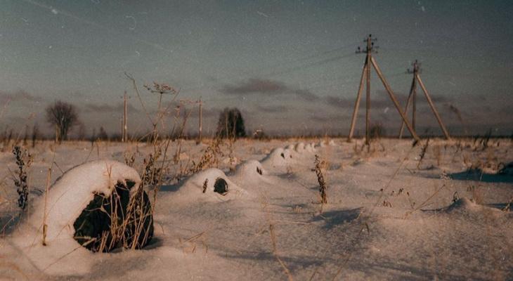Зимний Сыктывкар в объективах горожан: 10 лучших фото