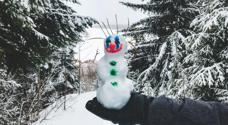 Фото дня под Сыктывкаром: последний снеговик