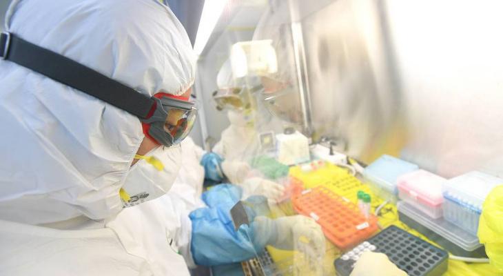В Сыктывкаре подтвердились еще два случая заболевания коронавирусом