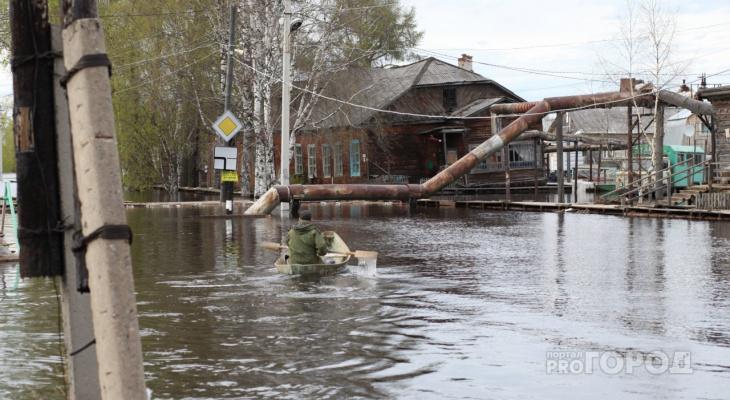 Как выживают сыктывкарцы в половодье: фоторепортаж из затопленных поселков