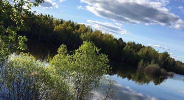 Фото дня от сыктывкарца: «Хорошо в деревне летом»