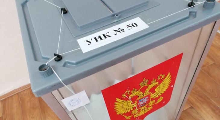 Жителям Коми напоминают о последнем дне голосования по поводу поправок в Конституции