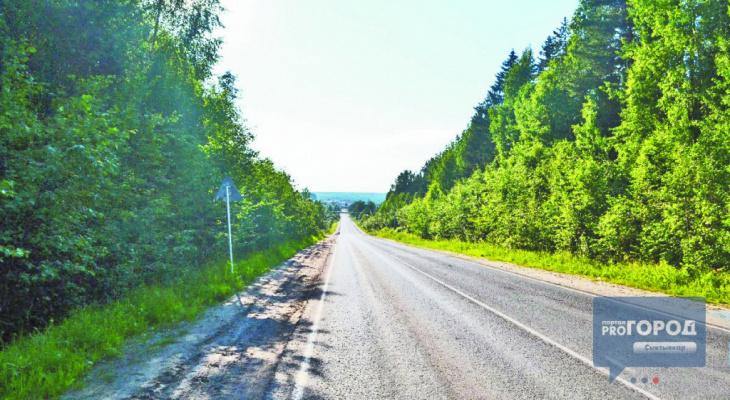 Погода в Сыктывкаре на 2 июля: тепло и небольшой дождь