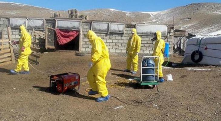 Рядом с российской границей зафиксирована вспышка бубонной чумы
