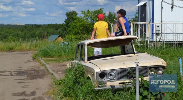 Погода в Сыктывкаре на 3 июля: ночная гроза и жаркий день