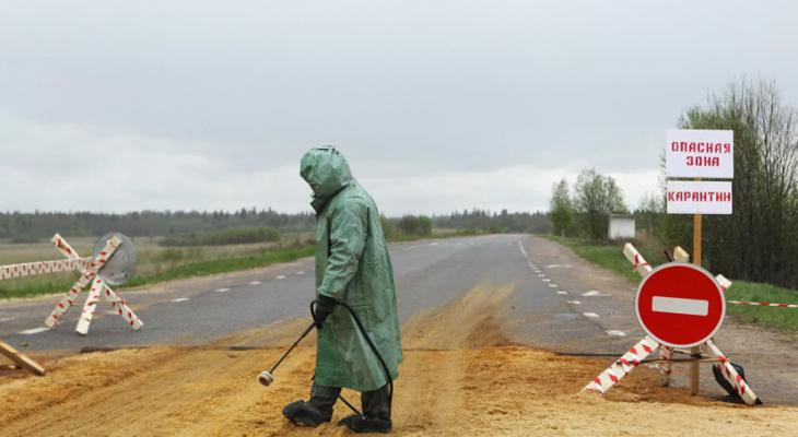 Доктор  оценил угрозу бубонной чумы для Российской Федерации  — Особо рискованная  инфекция