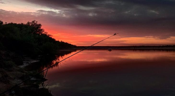 Щука, лещ, закат: фото дня от сыктывкарца