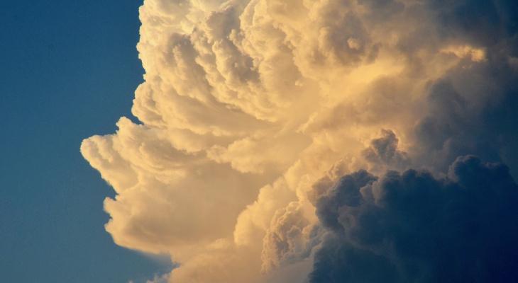 Погода в Сыктывкаре на 20 июля: тепло солнца и северные ветра