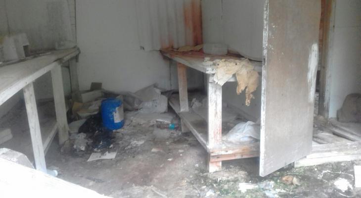 «Подростки жгут костры среди остатков химикатов»: жители коми села требуют зачистить заброшенную лабораторию