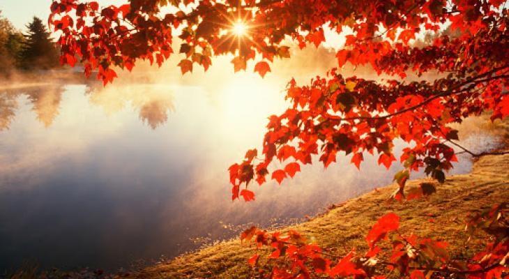 Погода в Сыктывкаре на 3 сентября: тепло и сухо