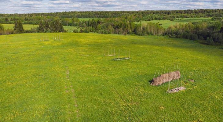 Фото дня в Сыктывкаре: необъятное поле в последний день лета