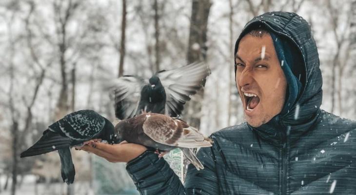 «Эти болезни унесли тысячи жизней»: ученые Коми рассказали, чем опасны голуби