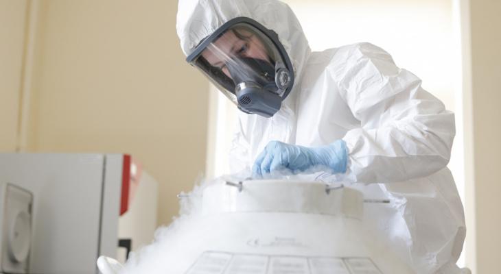 В Коми умерли пять пациентов с коронавирусом, 119 - заболели