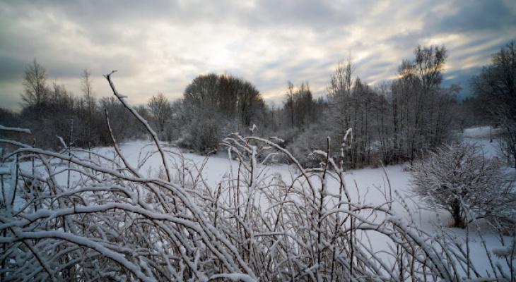Погода в Сыктывкаре на 20 ноября: в город придет потепление