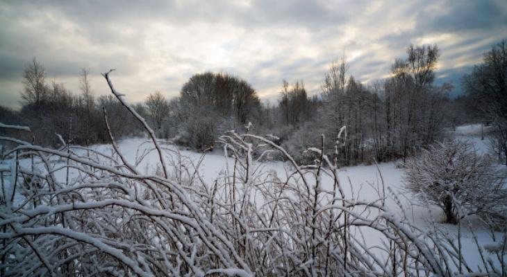 Погода в Сыктывкаре на 23 ноября: холод и небольшой снег