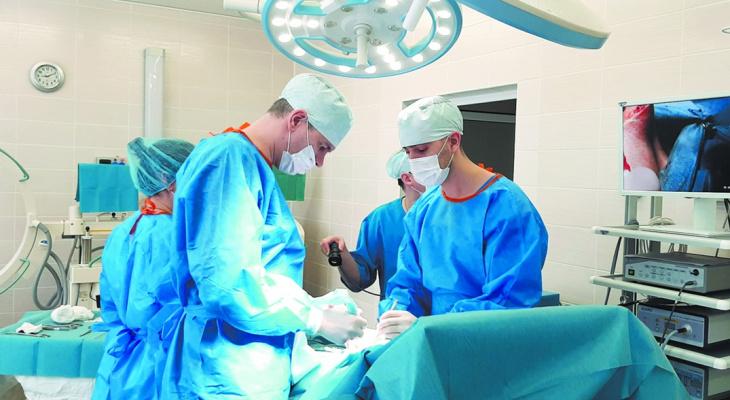 Сосудистая и пластическая хирургия доступна сыктывкарцам в Кирове