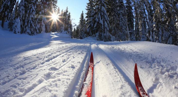 В Сыктывкаре отложили «Лыжню России»