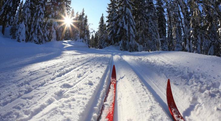 «Лыжню России» в Сыктывкаре снова отложили