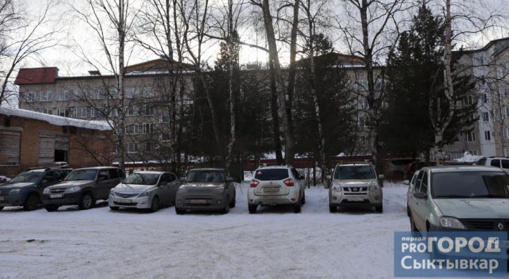 Администрация Сыктывкара ответила на возмущения жителей о срубе кедров