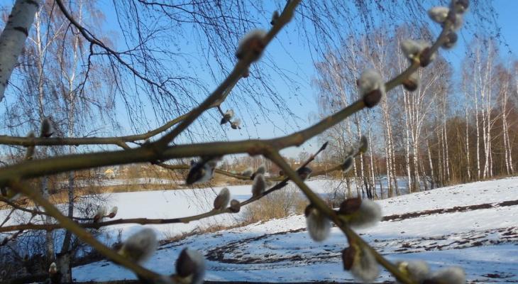 Погода в Сыктывкаре на 1 апреля: тепло и сыро