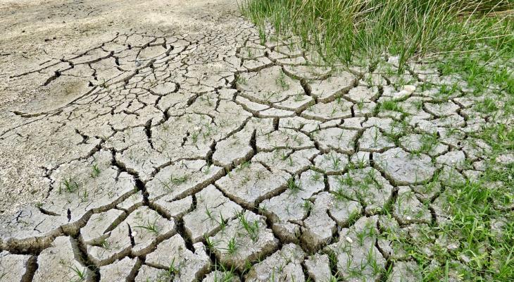 Климатолог предрек России засухи и жару