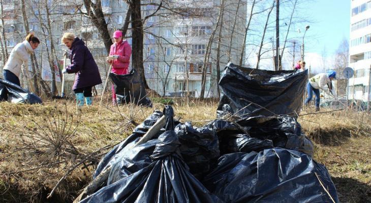 Субботник: кто и где будет убирать мусор в Сыктывкаре