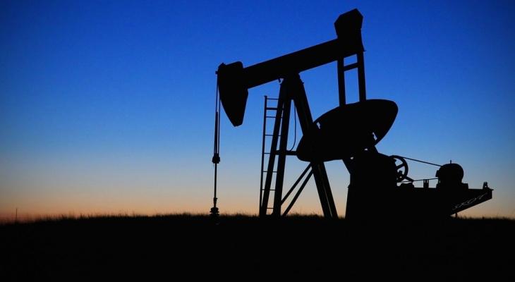 В Коми стали добывать меньше полезных ископаемых