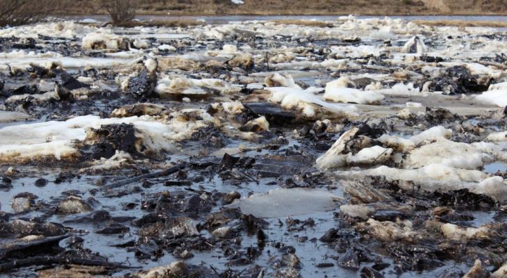 «Экосистема была критически нарушена»: эксперт озвучил свои версии недавнего разлива нефти в Ухте