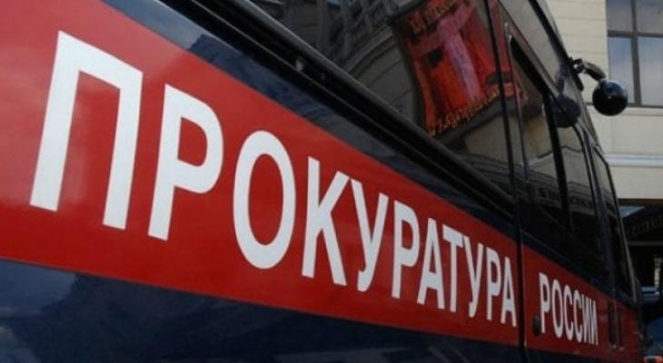 После публикаций в СМИ фото мертвого добермана в Сыктывкаре возбудили уголовное дело