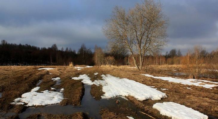 Погода в Сыктывкаре на 24 апреля: солнечная суббота