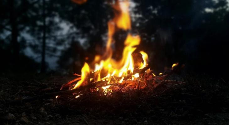 В Сыктывкаре запретили разводить костры и сжигать мусор