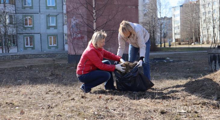 Мэр Сыктывкара убирала мусор и палые листья на общегородском субботнике