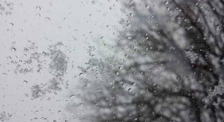 Погода в Сыктывкаре на 29 апреля: снег, дождь и ветер