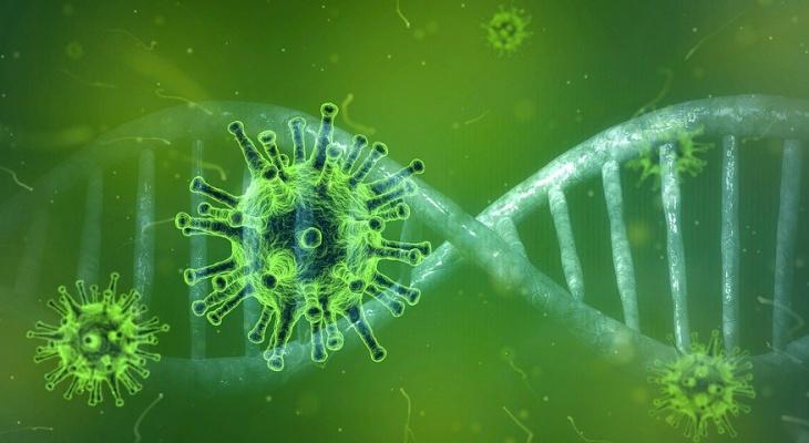 В Америке нашли способ «поджарить» коронавирус
