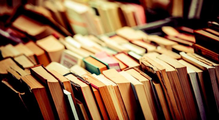 Число пользователей сервиса «Tele2 Книги» в Коми выросло в 31 раз