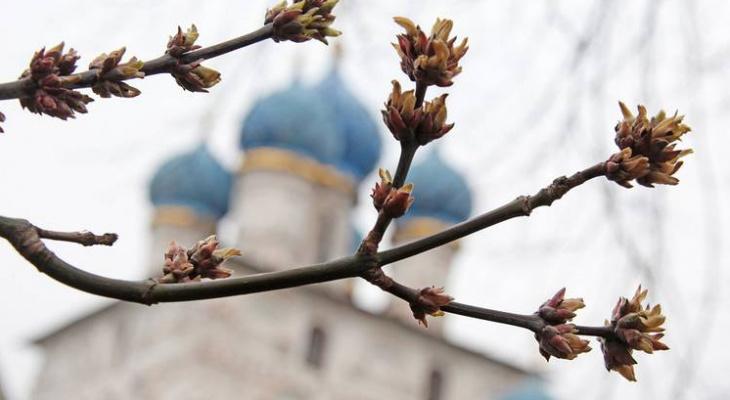Погода в Сыктывкаре на 30 апреля: ночные заморозки и дождь