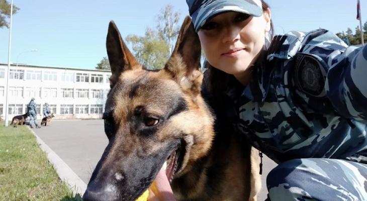 В Коми собака помогла полиции найти водку