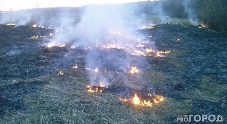 В Коми объявили максимальный уровень пожароопасности