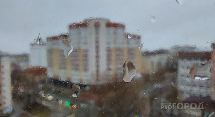 Гроза, ливень и порывы ветра: в МЧС Коми объявили штормовое предупреждение
