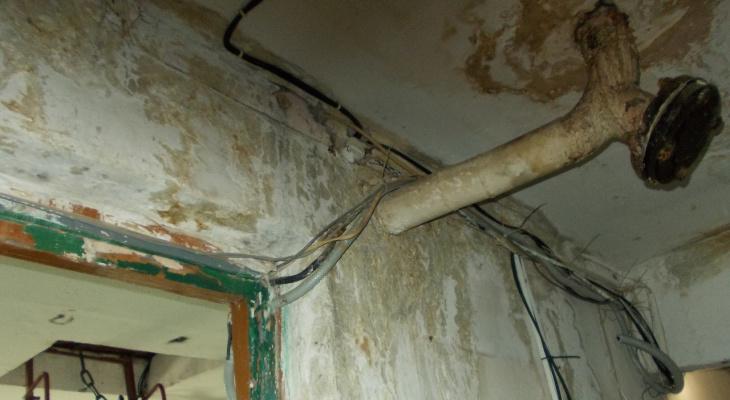 «Стены в плесени, в подвале вода»: сыктывкарка ведет борьбу с управляющей компанией уже несколько лет