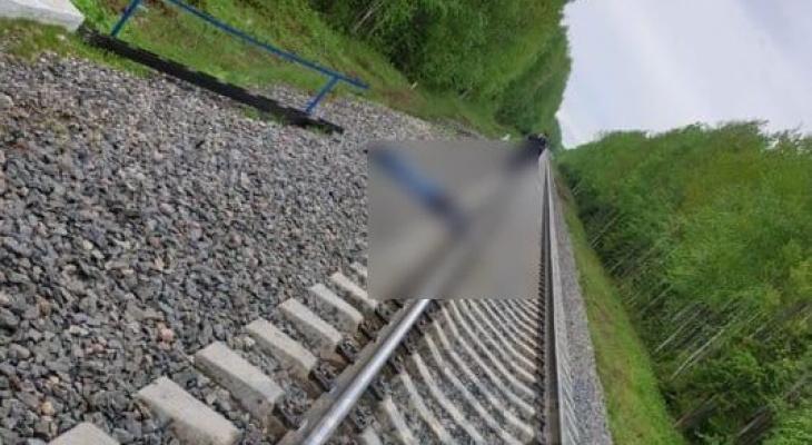 Проклятый перегон Човью-Койты или почему сыктывкарцы не реагируют на сигналы приближающегося поезда?