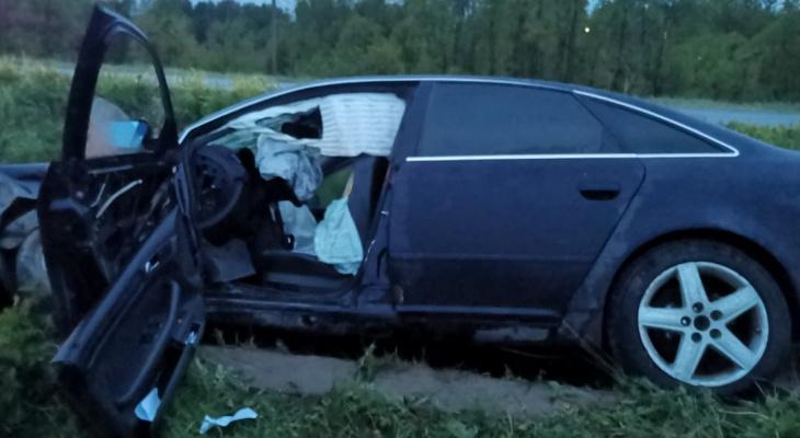 В Коми водитель «Ауди» улетел в кювет и сбежал, бросив пострадавшего