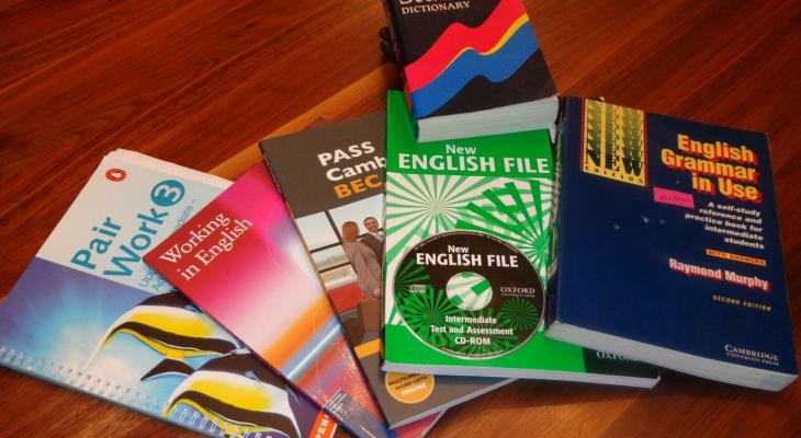 Уроки английского бесплатно: в Сыктывкаре преподавателям месяцами не выплачивают зарплату