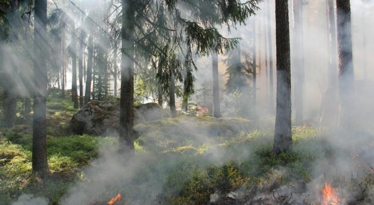 В Коми продлили предупреждение об опасном природном явлении