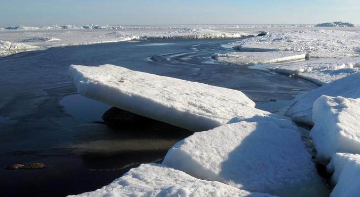 Минприроды заявило об «экстремальном» ускорении потепления в России