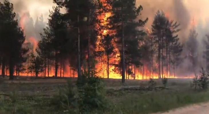 Почти во всей Республике Коми объявили чрезвычайно высокую пожароопасность