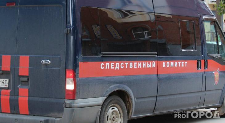 В Сыктывкаре завели уголовное дело на специалиста отдела снабжения птицефабрики «Зеленецкая»